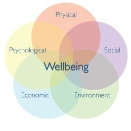 Well-Being - Physical, Social, Environment, Economic, & Psychological