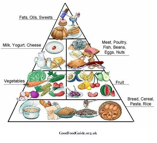 Thriving-Baby-Boomers - Nutrition - Standard American Diet Pyramid