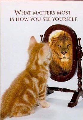 Thriving-Baby-Boomers - Body Image - Kitten looking in mirror and seeing a lion as its reflection - What Matters Most is How You See Yourself