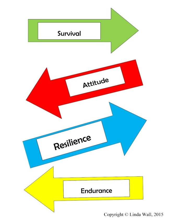 Thriving-Baby-Boomers - Resilience - Arrows in all directions: Survival; Attitude; Resilience; Endurance