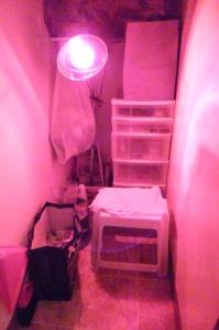 Thriving-Baby-Boomers - Saunas - my near infared sauna