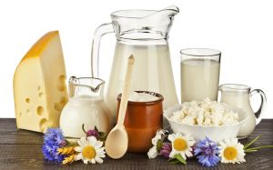 dairy_products_1 - sott dot net