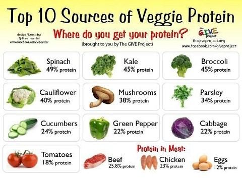 Top 10 Sources of Veggie Protein