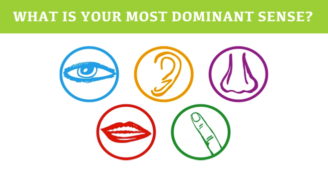 Thriving-Baby-Boomers - Dominant Senses - What Is Your Most Dominant Sense? (Visual, Auditory, Smell, Verbal, Kinesthetic)?