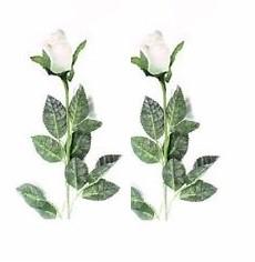 2 white roses