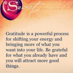Thriving-Baby-Boomers - Gratitude - Gratitude is a powerful process...
