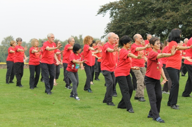 Thriving-Baby-Boomers - Energy Healing -Taoist Tai Chi for Energy Healing - Taoist Tai Chi practitioners in a park
